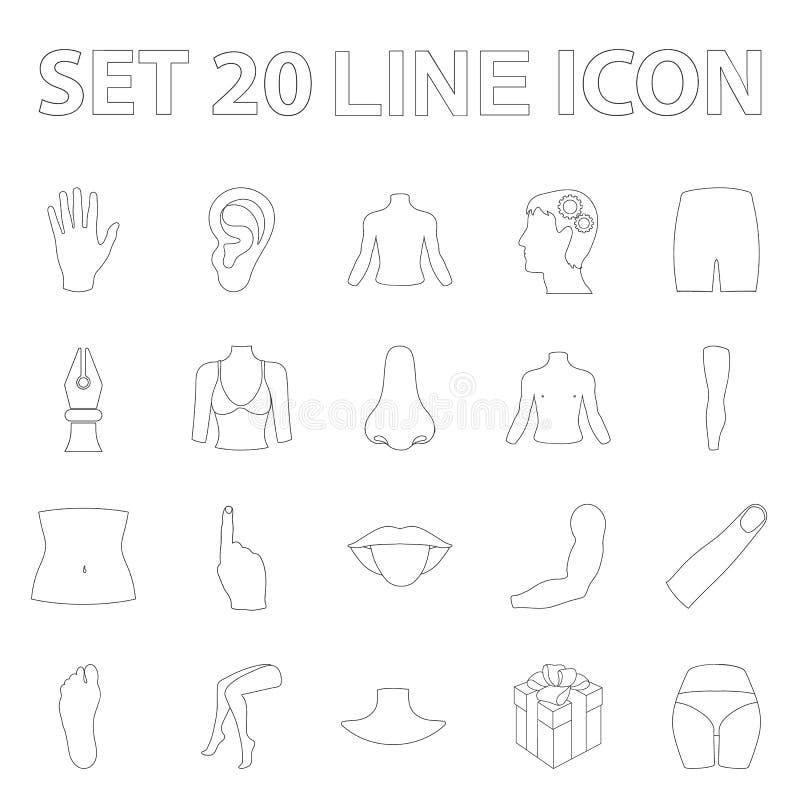 Część ciała, kończyna konturu ikony w ustalonej kolekci dla projekta Ludzkiej anatomii symbolu zapasu sieci wektorowa ilustracja ilustracja wektor