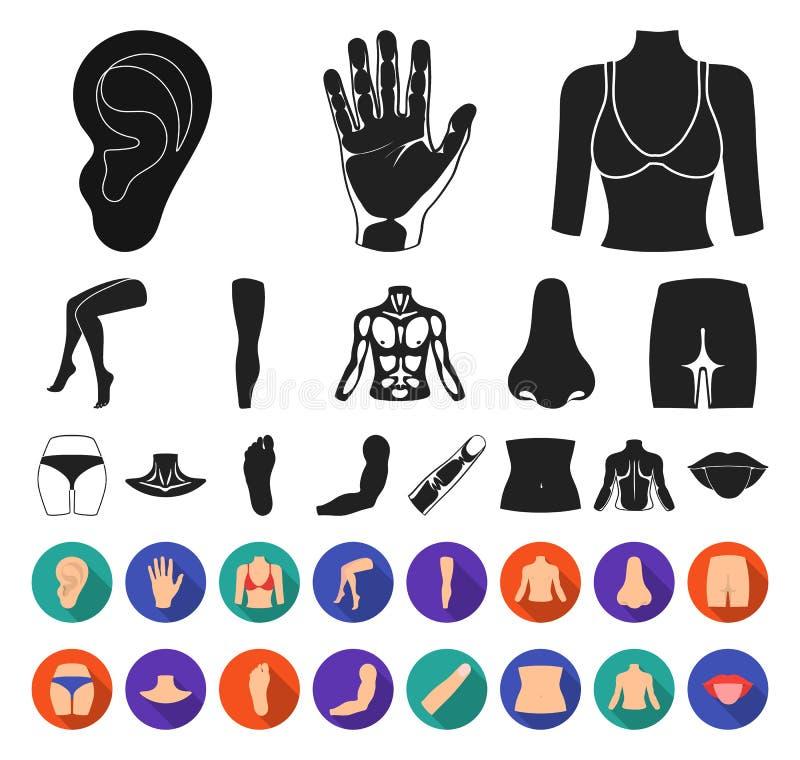 Część ciała, kończyny czerń, płaskie ikony w ustalonej kolekcji dla projekta Ludzkiej anatomii symbolu zapasu sieci wektorowa ilu ilustracja wektor