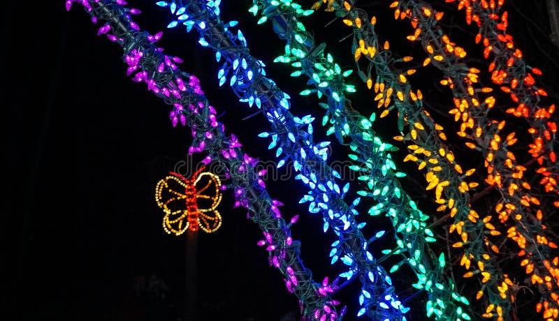 Część tęcza i motyl zaświeca przy bożonarodzeniowe światła przedstawieniem zdjęcia stock