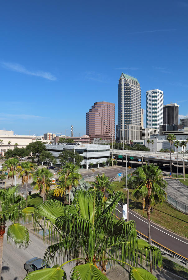 Częściowa linia horyzontu Tampa, Floryda vertical obraz stock