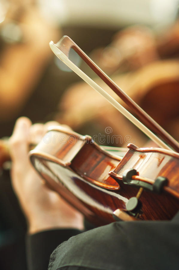 Członek bawić się skrzypce na koncercie muzyki klasycznej orkiestra zdjęcia stock