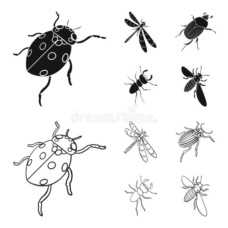 Członkonoga insekta ladybird, dragonfly, ściga, Kolorado ścigi insekt ustawiać inkasowe ikony w czerni, konturu styl royalty ilustracja