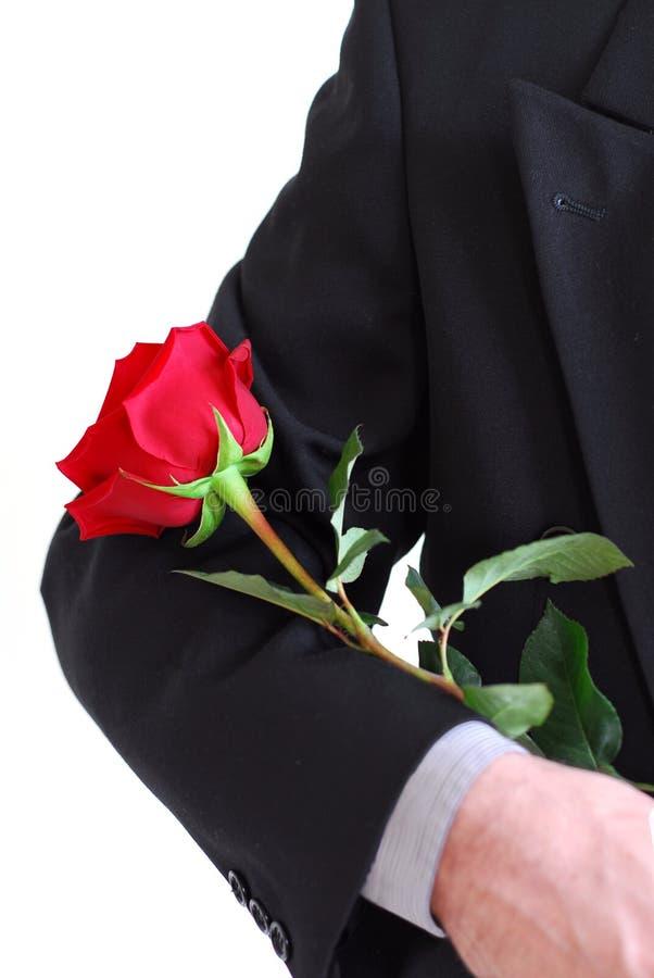 człowiek czerwona róża fotografia stock