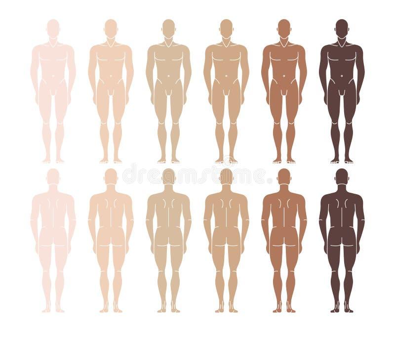 Człowiek nagi Stojący człowiek od tyłu ilustracji