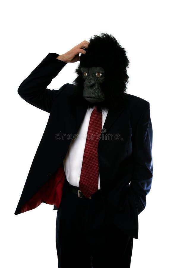 człowiek zagubiony goryla obrazy royalty free
