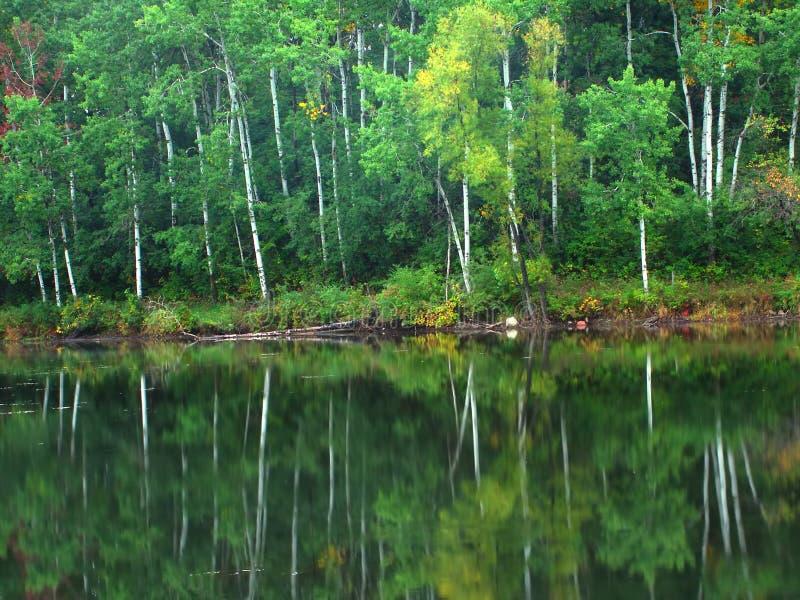 czajnik morena Wisconsin obraz royalty free