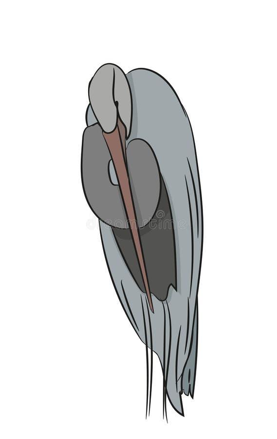 Czapli kolor, wektor royalty ilustracja