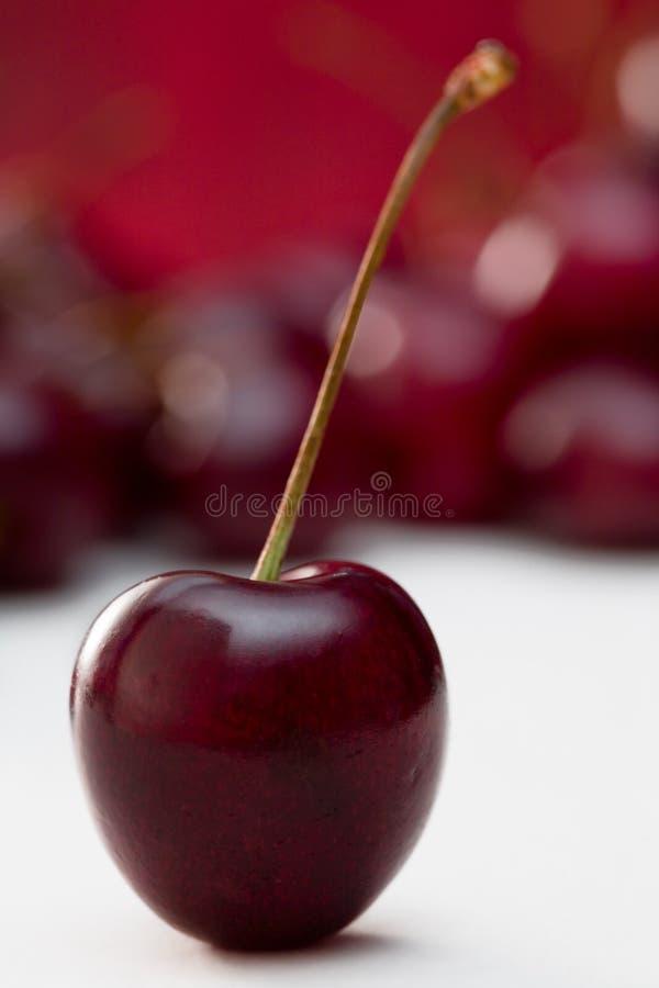 czarna cherry pojedyncza obrazy royalty free