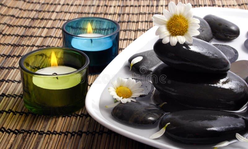czarna daisy otoczaków wody obraz stock