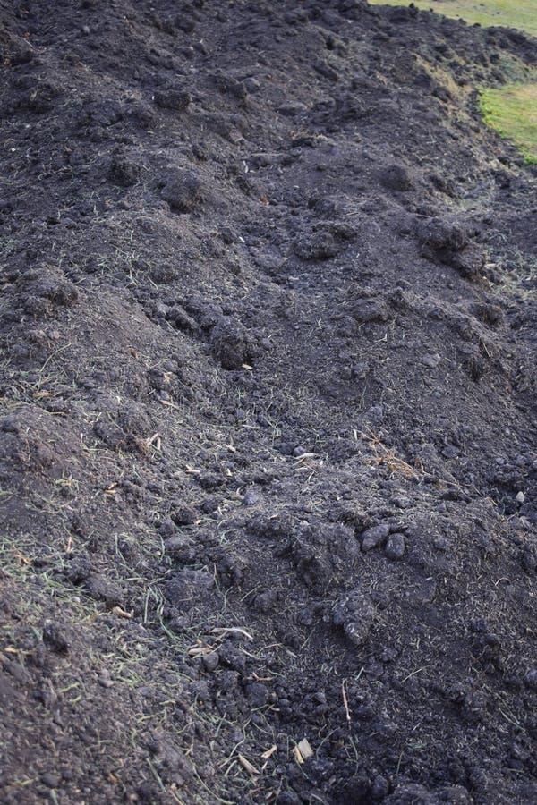 Czarna glebowa tekstura, żyzna ziemia z drobiazgami liście obraz stock