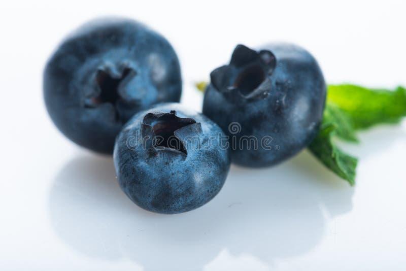 Czarna jagoda Świeże jagody odizolowywać na białym tle obraz royalty free