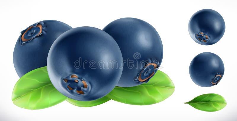Czarna jagoda Świeżej owoc 3d wektoru ikona ilustracji