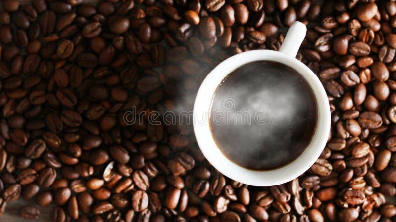 Czarna kawa w białej filiżance i kawowych fasolach, odgórny widok zdjęcia royalty free