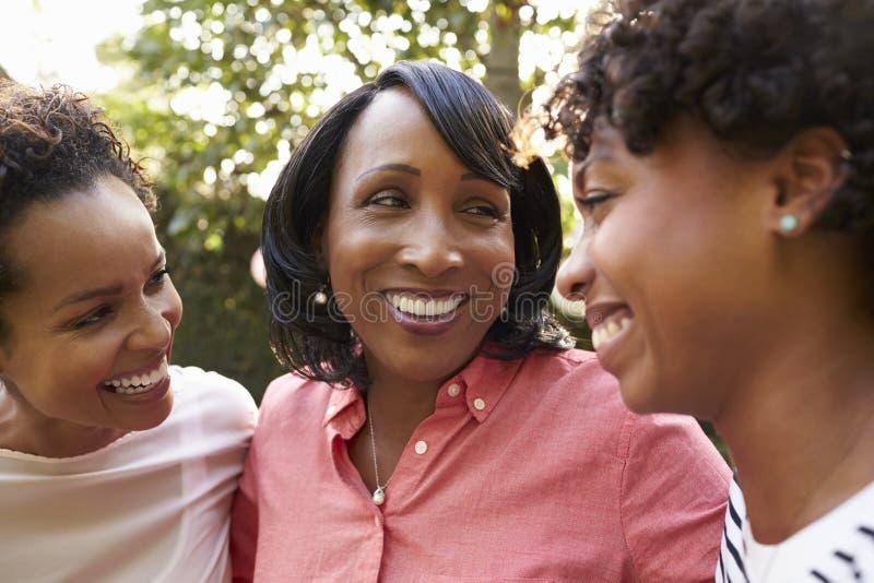 Czarna matka i dwa dorosłej córki w ogródzie, zamykamy up fotografia stock