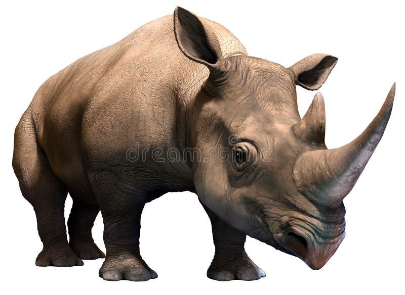 czarna nosorożca ilustracja wektor