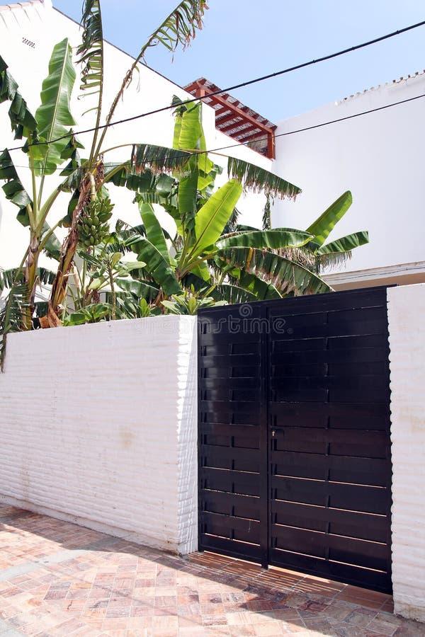 Czarna nowożytna brama i bananowy drzewo obraz royalty free
