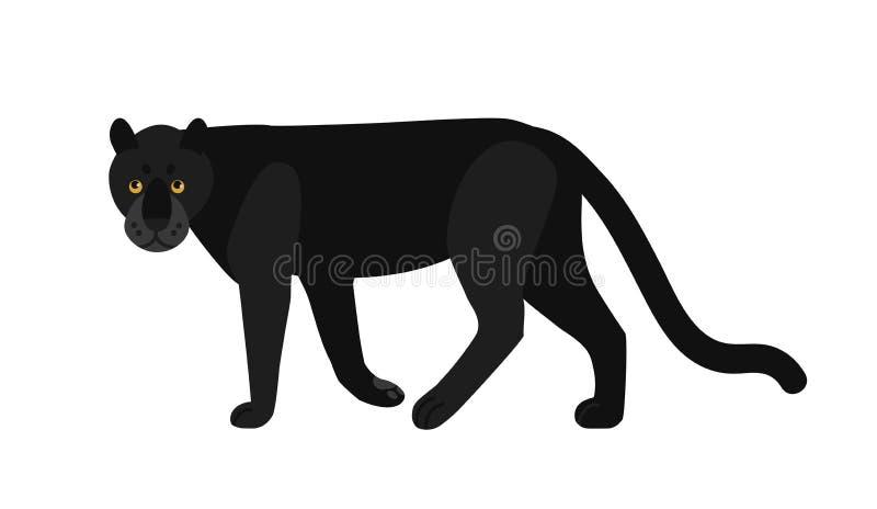 Czarna pantera odizolowywająca na białym tle Oszałamiająco dziki egzotyczny mięsożerny zwierzę Pełen wdzięku wielki dziki kot lub ilustracji