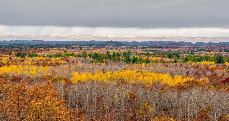 Czarna Rzeczna dolina w jesieni zdjęcia stock