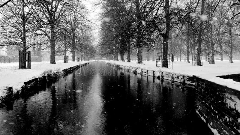 Czarna rzeka zdjęcia stock