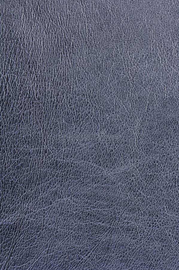 czarna skóra zdjęcie stock