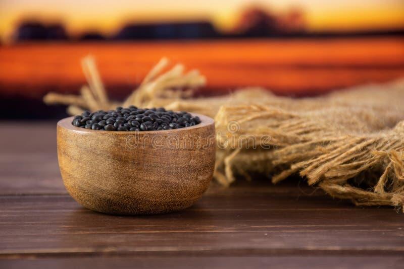 Czarna soczewicy bieługa z jesieni polem za zdjęcia stock