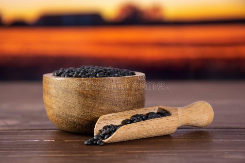 Czarna soczewicy bieługa z jesieni polem za fotografia royalty free