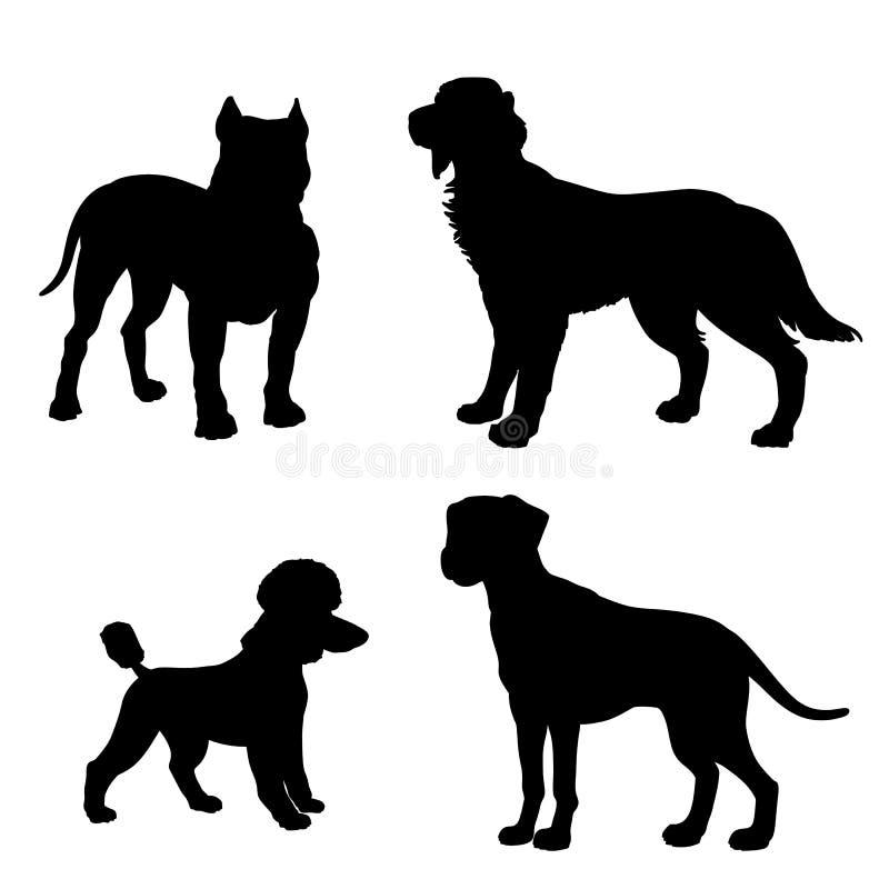 Czarna sylwetka psy Dalmatyńscy, pudel, Irlandzki legart, royalty ilustracja