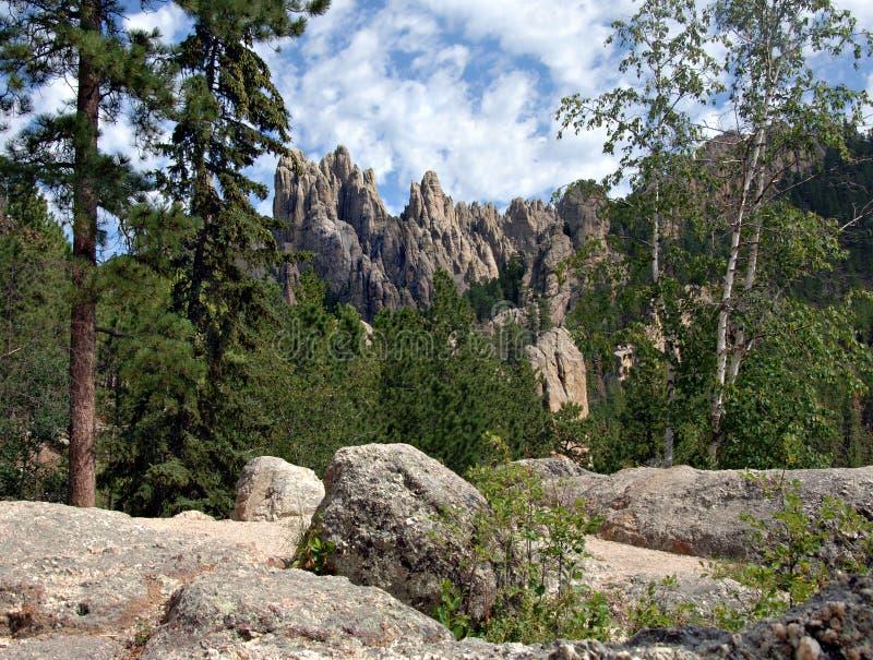 czarne Dakota wzgórz południowej iglicy granitowe fotografia stock