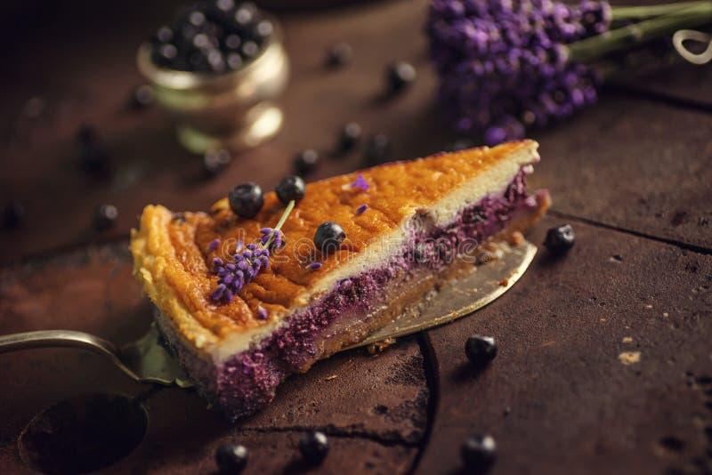Czarne jagody i lavander cheesecake słuzyć na piekarniku z jagodami życie dla patisserie i kwiatami, wciąż, zdrowy tort zdjęcia royalty free
