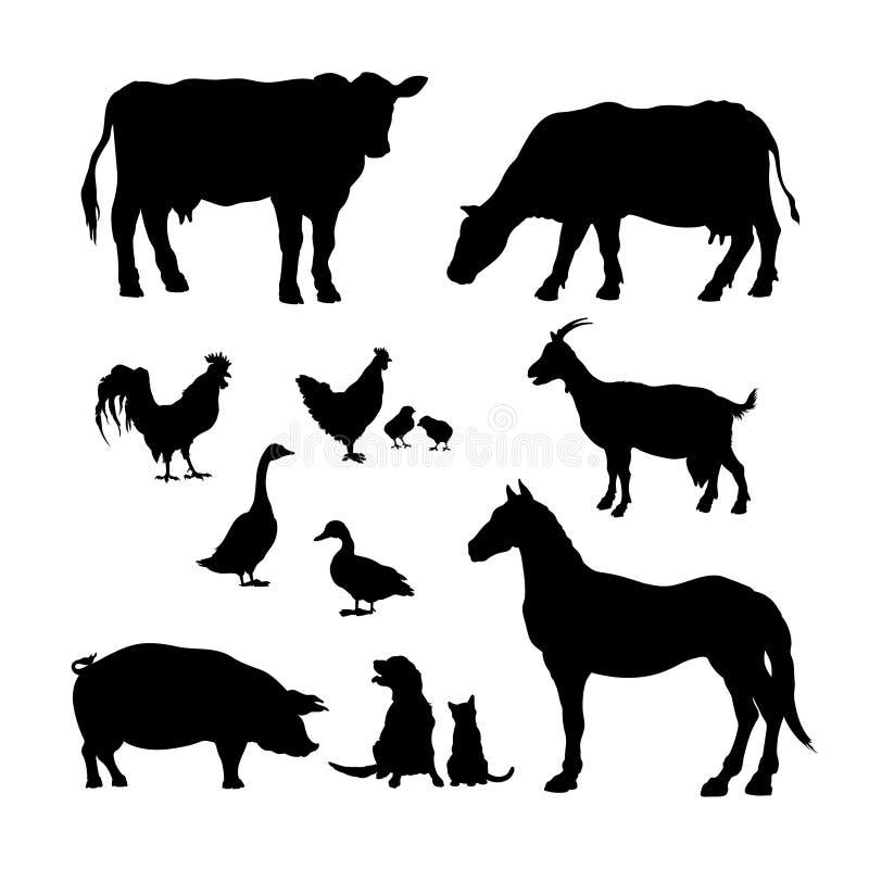Czarne sylwetki zwierzęta gospodarskie Ikony ustawiać domowi bydło Odosobniony wizerunek wiejski bydlę i drób ilustracja wektor