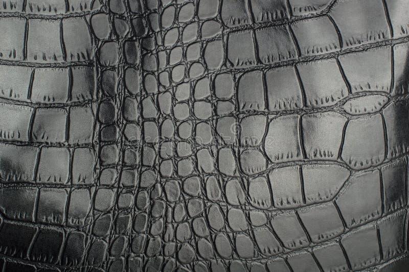Czarnego gada rzemienna tekstura dla z tłem fotografia royalty free