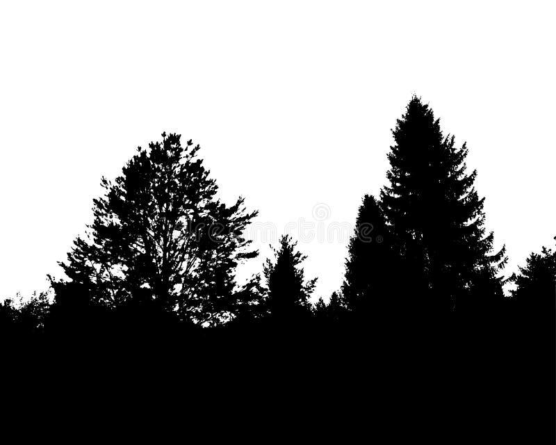 Czarnego lasu sylwetka pojedynczy białe tło ilustracja wektor