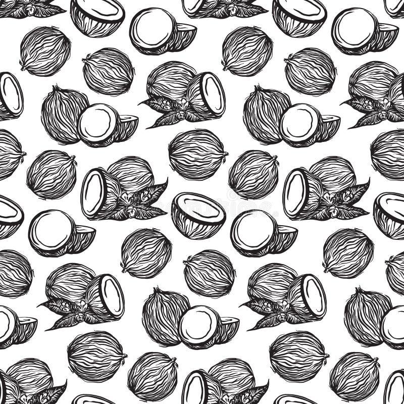 Czarnego nakreślenie koks konturu bezszwowy wzór Wektorowe rysunkowe coco owoc Wręcza patroszoną niekończący się ilustrację, odiz ilustracji