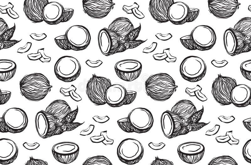Czarnego nakreślenie koks konturu bezszwowy wzór Wektorowego atramentu coco rysunkowe owoc Wręcza patroszoną graficzną ilustrację royalty ilustracja