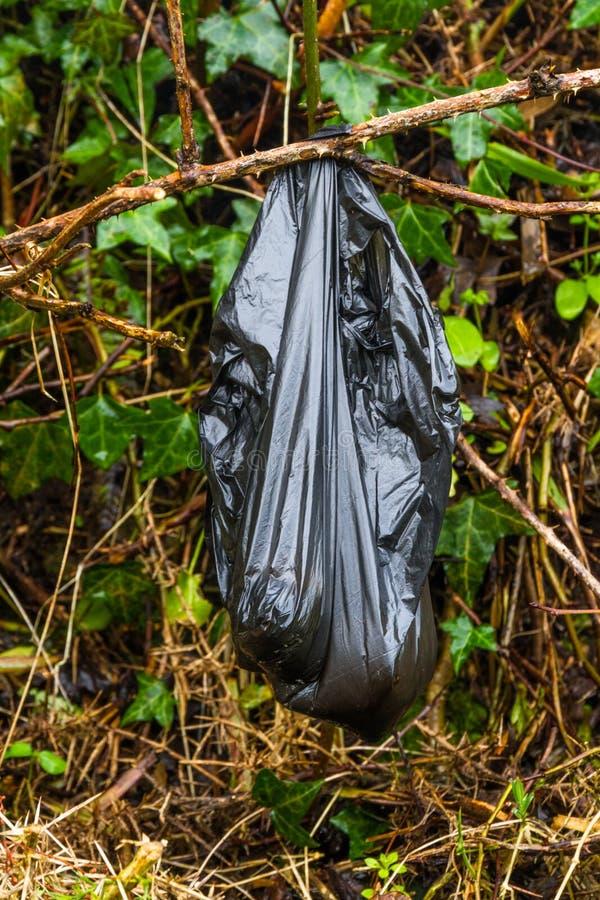 Czarnego psa poo kaku torba opuszczał w krzaku obraz stock