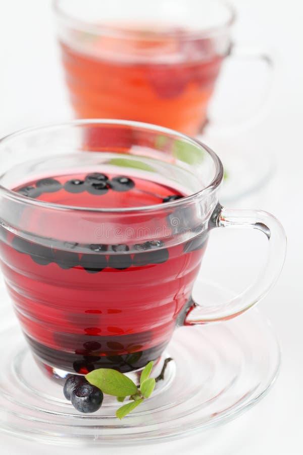 czarnej jagody malinki herbata fotografia royalty free