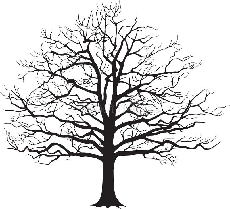 Czarnej sylwetki nagi drzewo również zwrócić corel ilustracji wektora ilustracja wektor