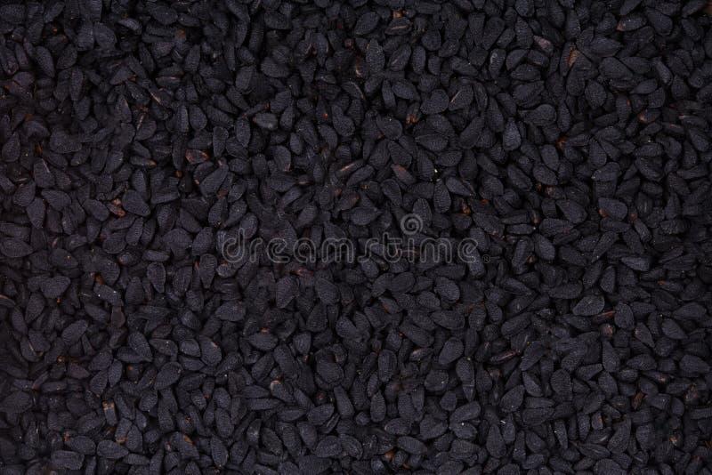 Czarni kminów ziarna, Nigella sativa - zbliżenia tło obraz stock