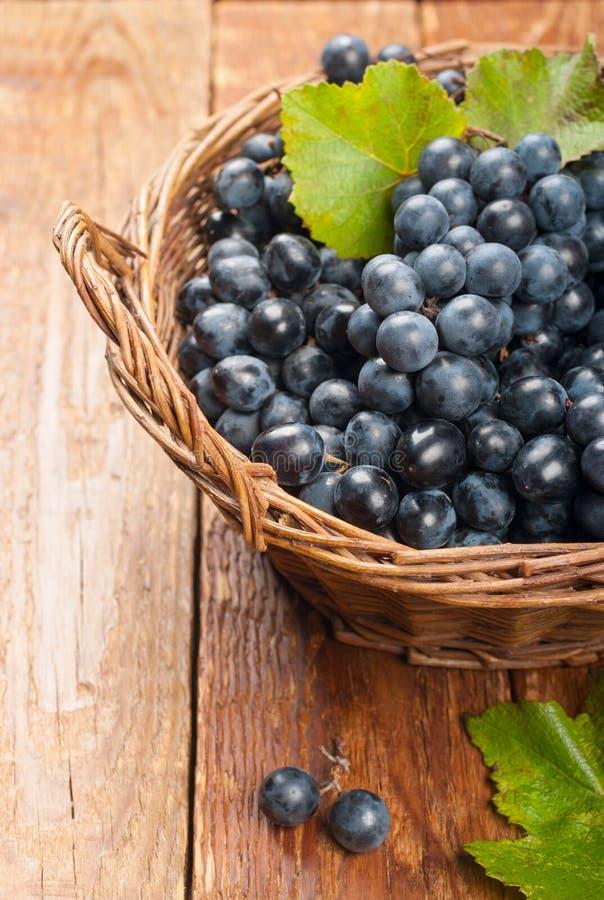 Czarni winogrona w koszu obrazy royalty free