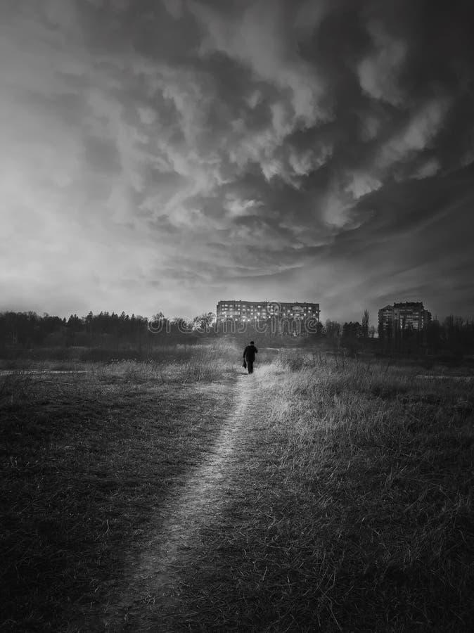 Czarno-biała scena, pionowy strzał wędrownego mężczyzny sylwetka chodząca wąską ścieżką rzucać dziką dziką Cichy wieczór obraz royalty free