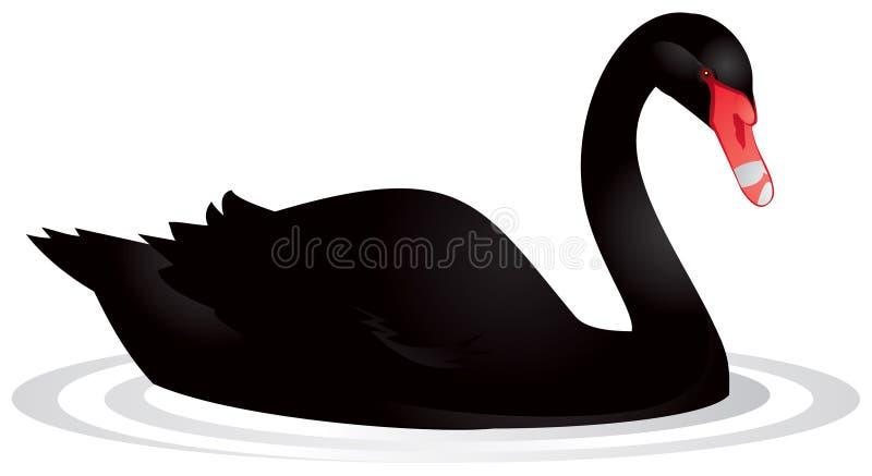 czarny łabędź royalty ilustracja
