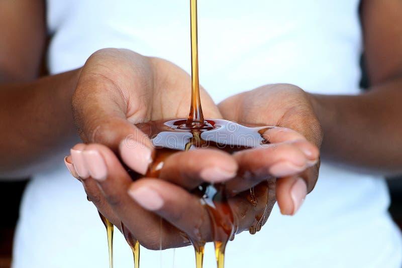 Czarny Afrykanin wręcza mienie miód obraz royalty free