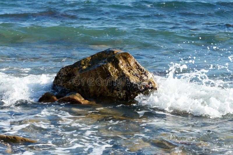 Czarny Denny wybrzeże Rosja zdjęcie stock