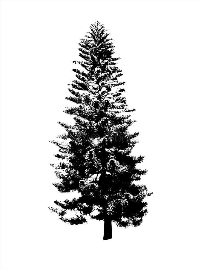czarny drzewo ilustracji