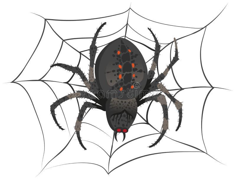 Czarny duży straszny pająka obsiadania centrum sieć Jadu pająk ilustracji