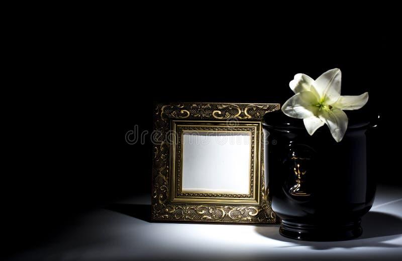 Czarny ewangelicki łzawica z pustą opłakuje ramą i kwiatem, fotografia royalty free