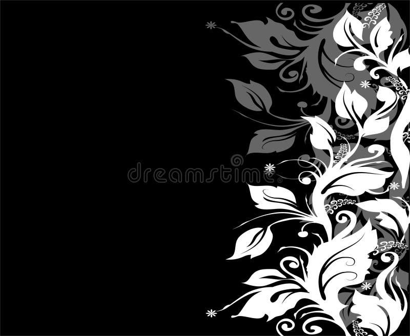 czarny, granica white ilustracji