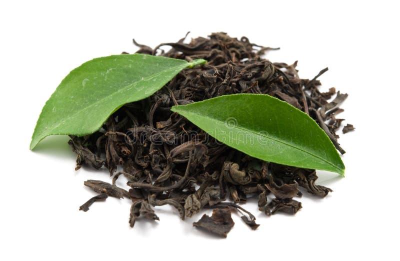 czarny herbata zdjęcia stock