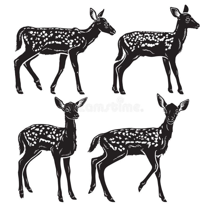 Czarny i biały szczegółowe sylwetki młodzi dziecko rogacze royalty ilustracja