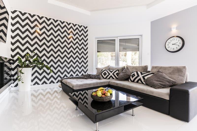 Czarny i biały żywy izbowy pomysł zdjęcie stock